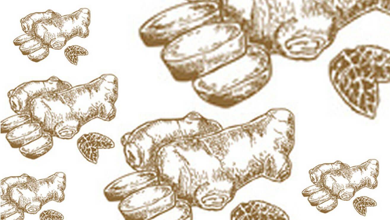 Продукты для здоровья десен: корень имбиря