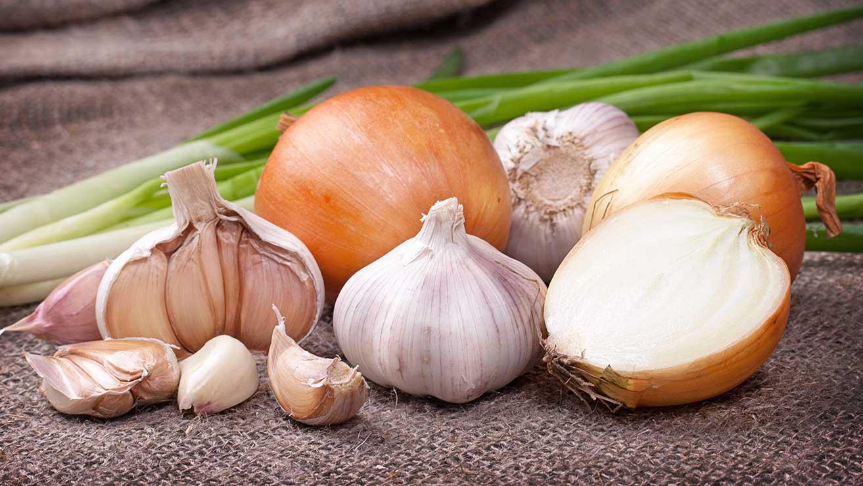 Что такое галитоз: неправильное питание